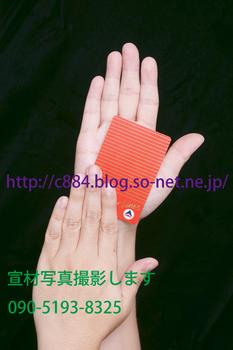 hands4533b.jpg
